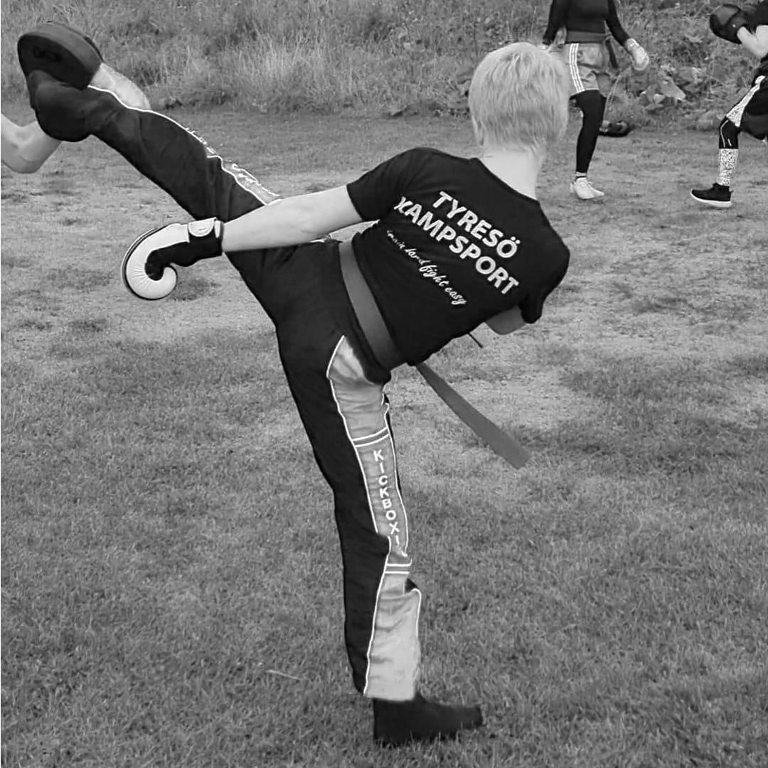 kickboxning_push